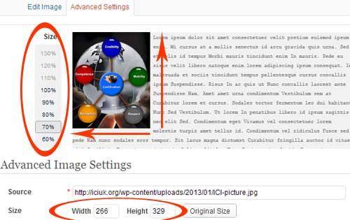 Image Edit Propotional Dimensions Wordpress Editor