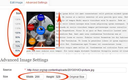 Image Edit Propotional Dimensions Wordpress Editor