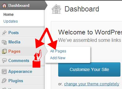 Wordpress-Dashboard